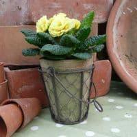Rustic Pot Set - Single